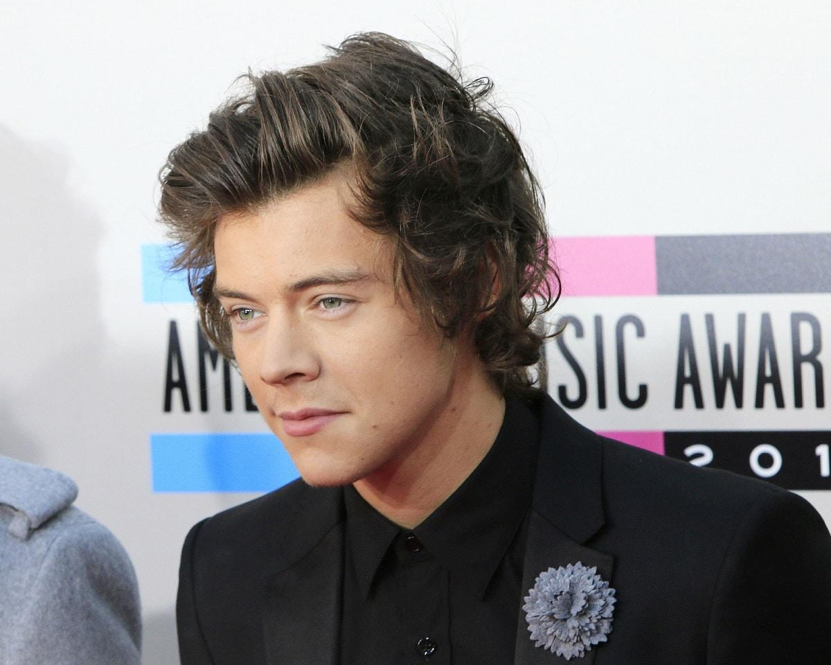 Harry Styles Vomita en Carretera