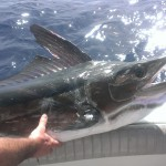 Flota de pesca deportiva Solmar