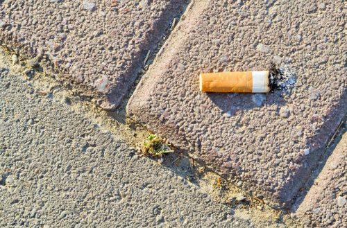 daños de tirar las colillas de cigarro en la calle
