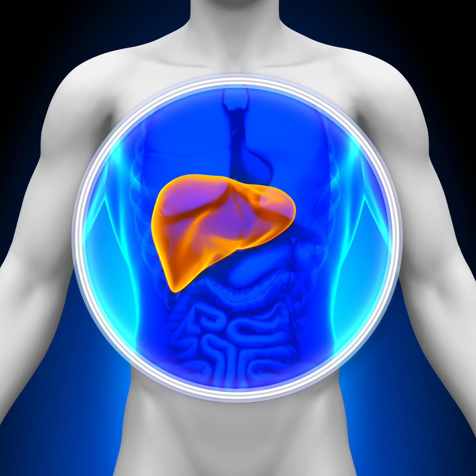 5 alimentos que dañan tu hígado