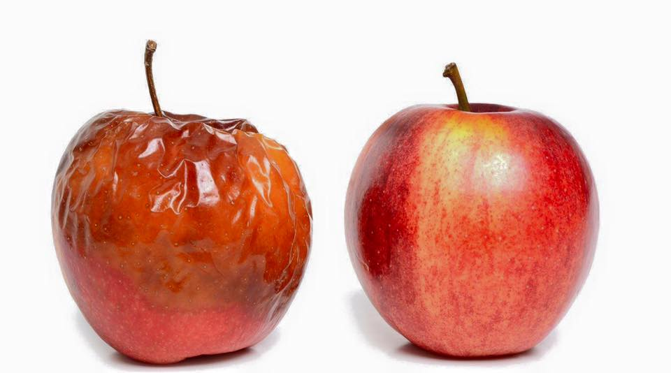 comer frutas y verduras podridas