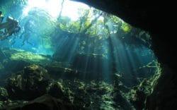 El Cid en Riviera Maya Comparte las Mejores Atracciones para 2017
