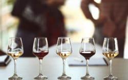 Los socios de El Cid Vacations Club son bienvenidos a los eventos mensuales de degustación de vinos