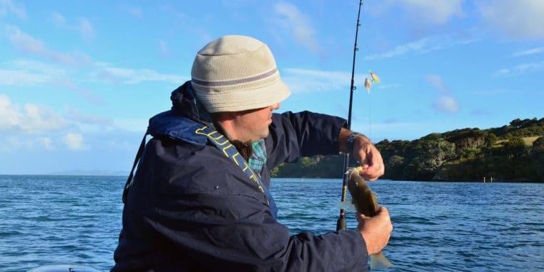 Marina Fiesta anuncia que la temporada fuerte de pesca en Cabo, está a punto de comenzar