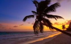 Krystal Cancun Tiempo Compartido: Vacaciones de Lujo