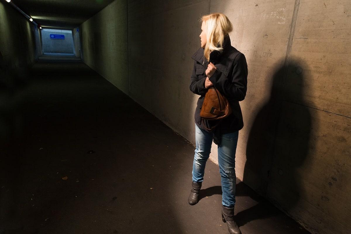 Acoso Sexual a Mujeres en la Calle