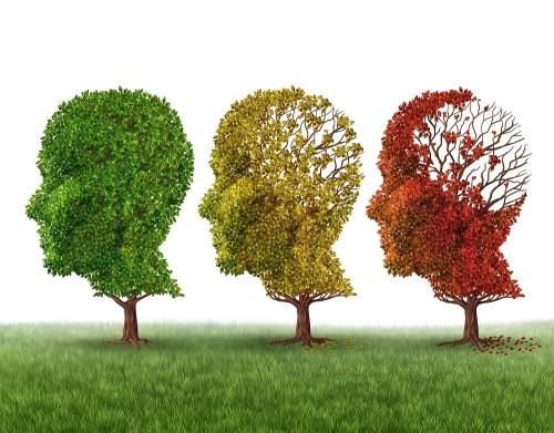 cosas que dañan el cerebro