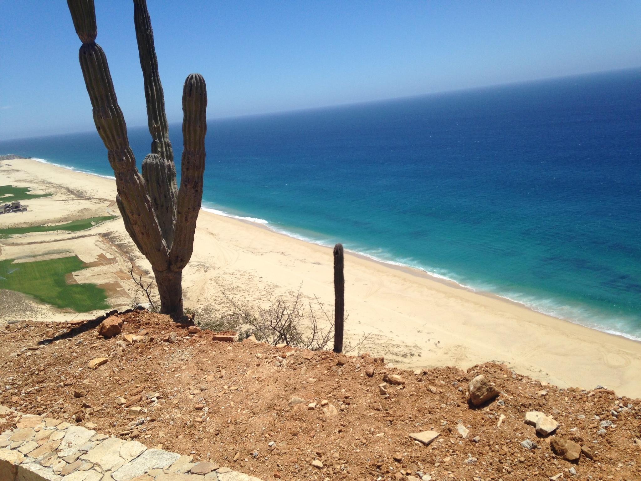 ¿Por qué el desierto resulta ser tan tentador como la playa en Los Cabos?