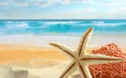 Explorers Travelers Club reporta que Cancún sigue siendo el destino premier de México