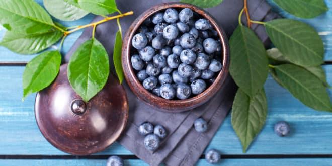 Beneficios de las Moras Azules en la Salud