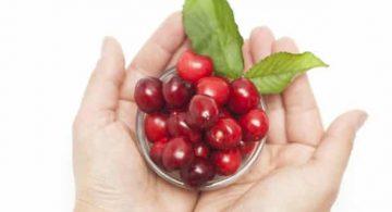 Cinco Alimentos que Te Pueden Intoxicar y Que Debes Evitar Comer. Cereza