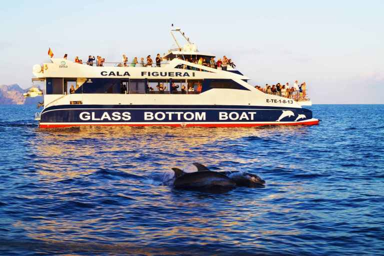 vacaciones en mallorca, recorridos en barco mallorca, excursiones en mallorca, paseos en barco con fondo de cristal mallorca