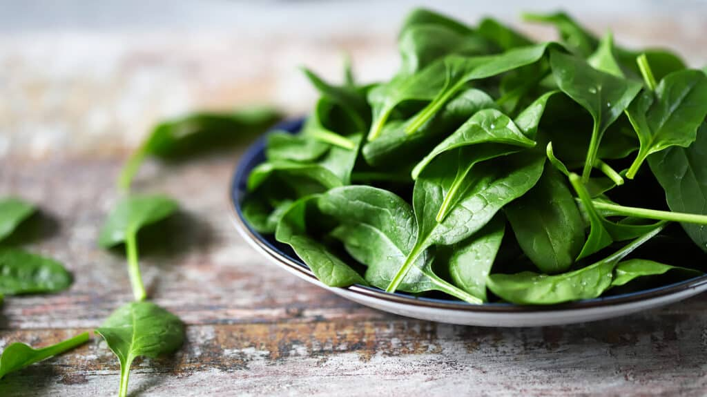 espinaca, batidos saludables y nutritivos, batidos energizantes para desayunar, batidos para tener energía, batidos vitamínicos, batidos nutritivos y sus beneficios, licuados nutritivos, recetas de licuados y sus beneficios