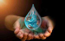 ahorro de agua en el jardín, como ahorrar agua al regar las plantas, como ahorrar agua en el riego, ahorro de agua en riego de jardines, como cuidar el agua en el jardín