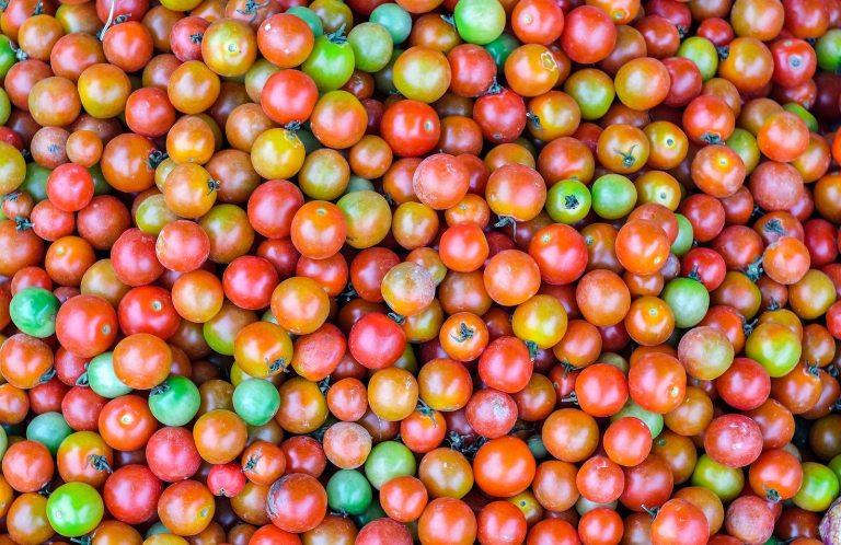 beneficios del tomate, propiedades del tomate crudo, beneficios del tomate para la piel, beneficios del tomate para el hombre