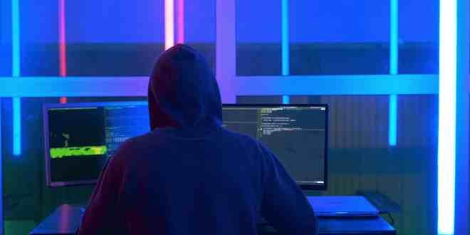 cómo proteger las páginas web, como evitar hackeos, seguridad interna del sitio web, como proteger mi página web de hackers, como evitar que hackeen tu página web, seguridad del sitio web interno, proteger mi sitio web