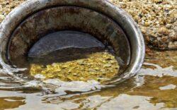 lavado de oro, lavar oro en rio, bateo de oro, como lavar oro con batea, proceso de extracción de oro artesanal, donde buscar oro en oregon