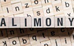 pensión alimenticia, demanda de pensión alimenticia, pagos de pensión alimenticia, consulta de pensión alimenticia
