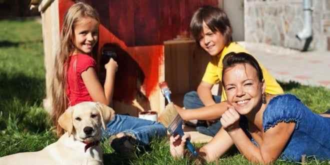 proyectos caseros para perros, dispensador de comida para perros proyecto, comedero casero para perros, como hacer un dispensador de comida para perros, como hacer una casa para perros fácil, como hacer una casa para perro casera