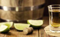 tequila con gusano de maguey, tequila mezcal gusano, tequila gusano rojo, porque el mezcal tiene un gusano, el gusano del tequila se come, tequila con gusano dentro, gusano de maguey, gusano de maguey mezcal